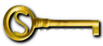 Coaching for Success logo 7