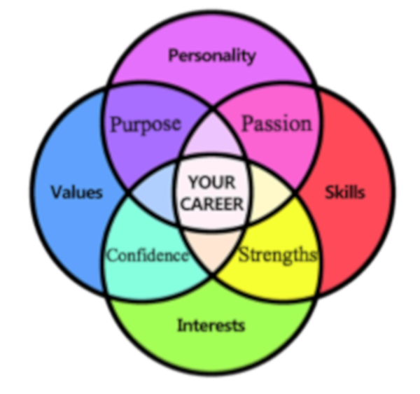 your ideal career coaching for success
